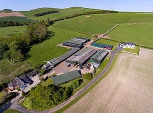 farm 6.jpg
