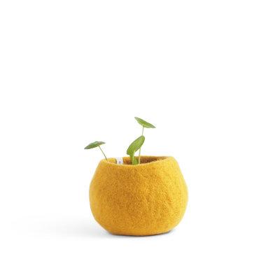 AVEVA flower pot, yellow senap (Small)