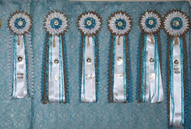 COTY AND TOP 5 ROSETTES