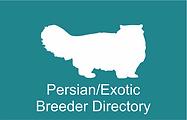 CFSA Persian Exotic
