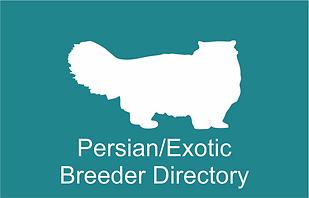 a Persian.png