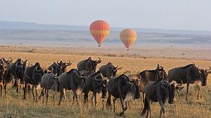 Serengeti-Balloon-Safari-andBeyond-Exper