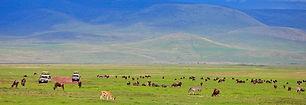 1493417740_ngorongoro-crater-game-viewin