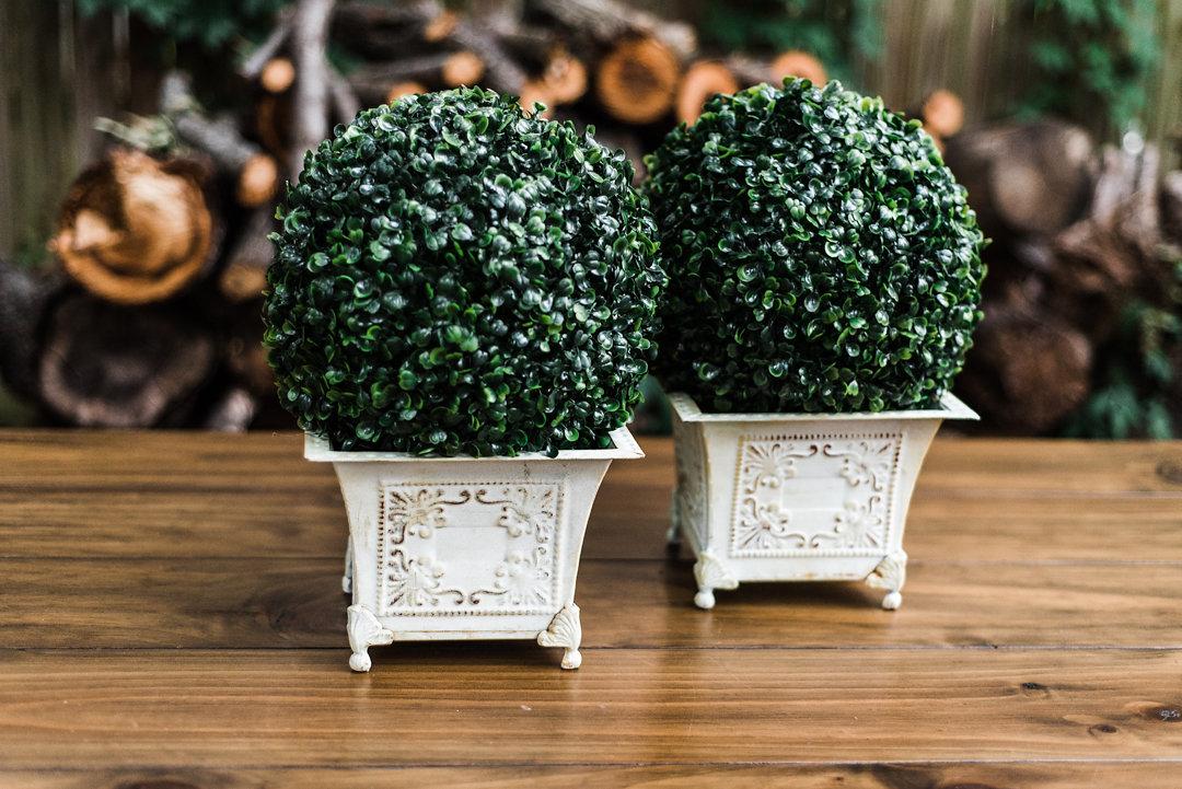 Boxwood Pots