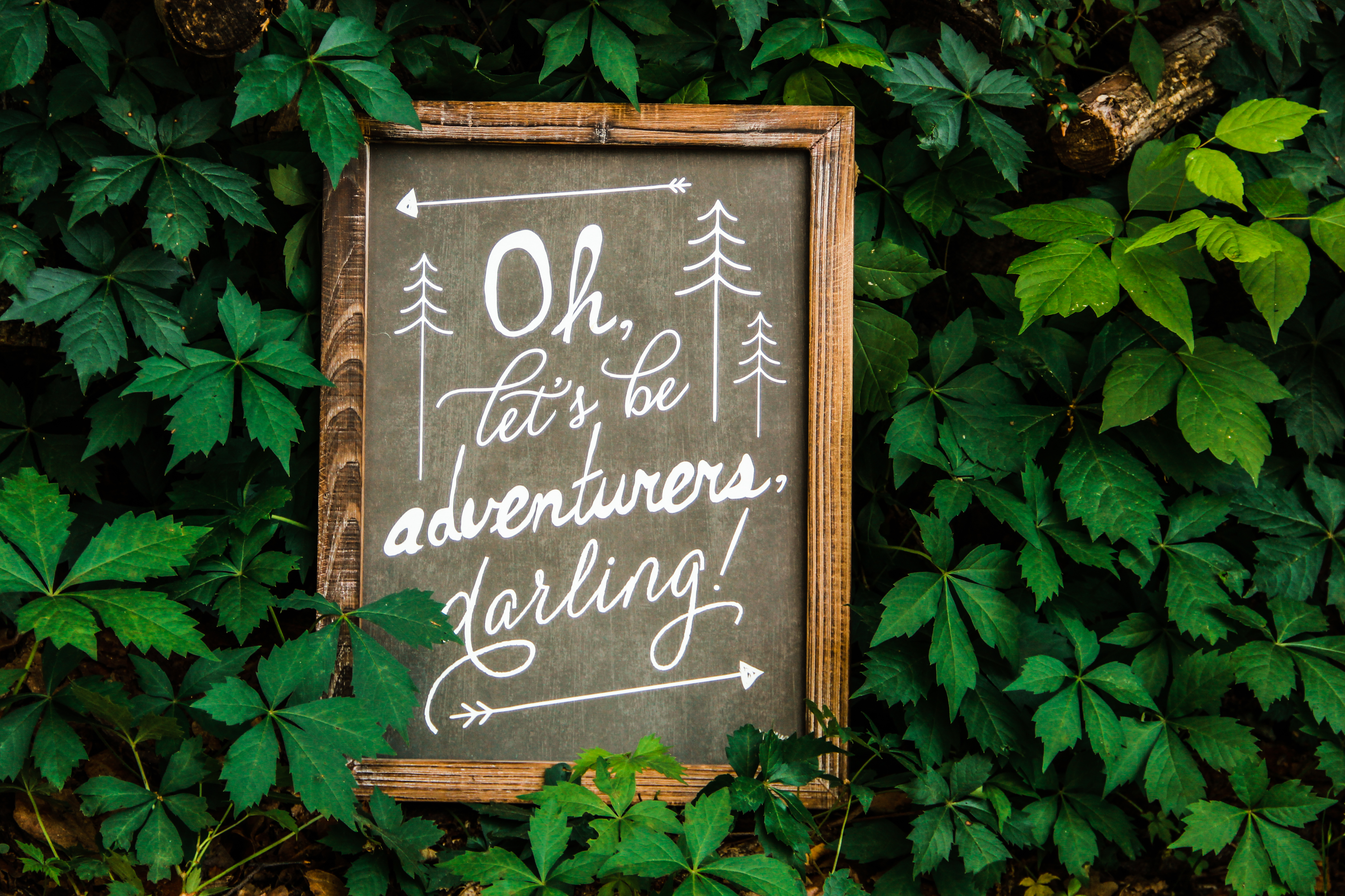 'Oh lets be adventurers darling Sign