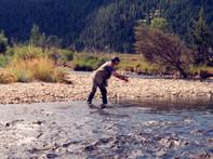 Fly fishing on Flint Creek