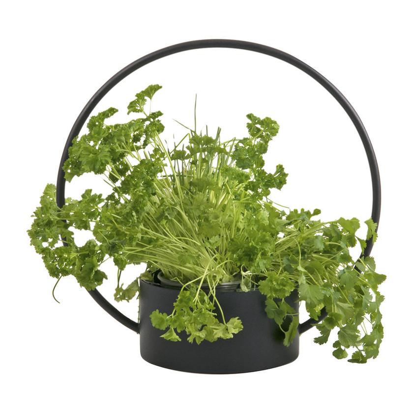 O Planter