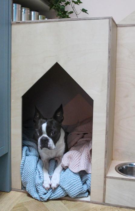 Bespoke Dog Crate