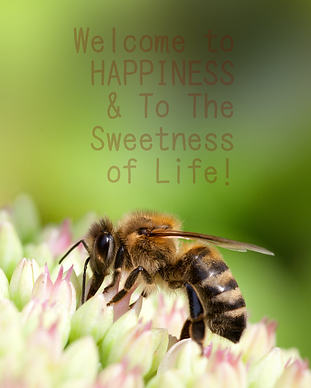 welcome to happiness bee 2020mar29.png