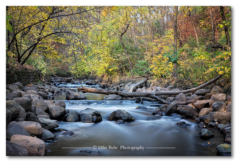 Fall Along the Creek