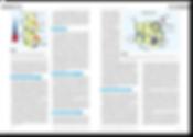 DZSM Wissenschaftlicher Artikel Innenseite 1 Editorial Design