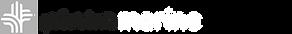 pinta marine logo