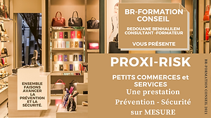 Copie de PRESENTATION  PROXI-RISK PETITS
