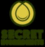 SecretIng_Logo_FullColor.png