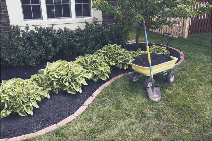 Plant Garden Project