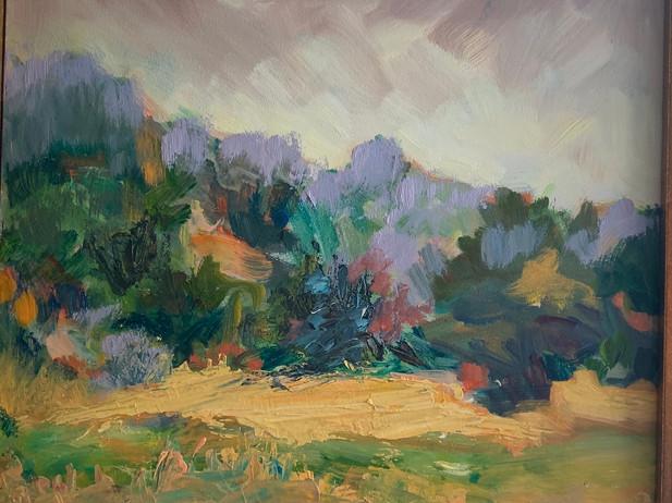 Monhegan Marsh