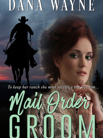 Author Interview: MAIL ORDER GROOM by Dana Wayne