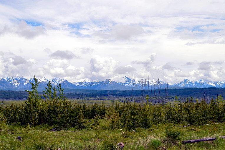 Glacier National Park_June_MK McClintock