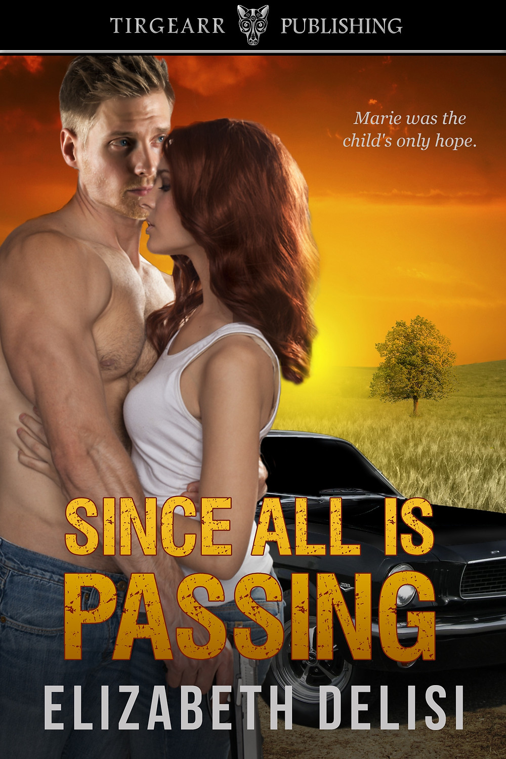 SINCE ALL IS PASSING by Elizabeth Delisi
