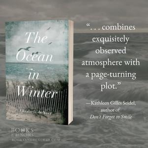 """THE OCEAN IN WINTER by Elizabeth de Veer - Excerpt - """"Remarkable"""""""