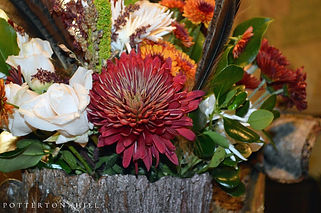 Autumn Tablescape Fall Colors_PottertonH