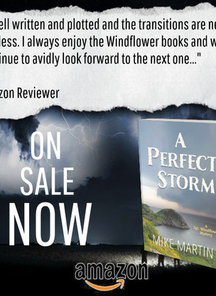 """Twists and Turns"" - A Perfect Storm by Mike Martin - Interview + Excerpt"