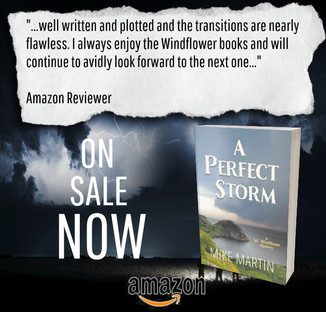 """""""Twists and Turns"""" - A Perfect Storm by Mike Martin - Interview + Excerpt"""