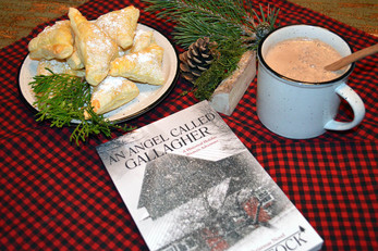 Book Break with An Angel Called Gallagher - Chocolate Triangles