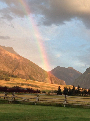 Living in Montana: FAITHFUL by Janet Fox