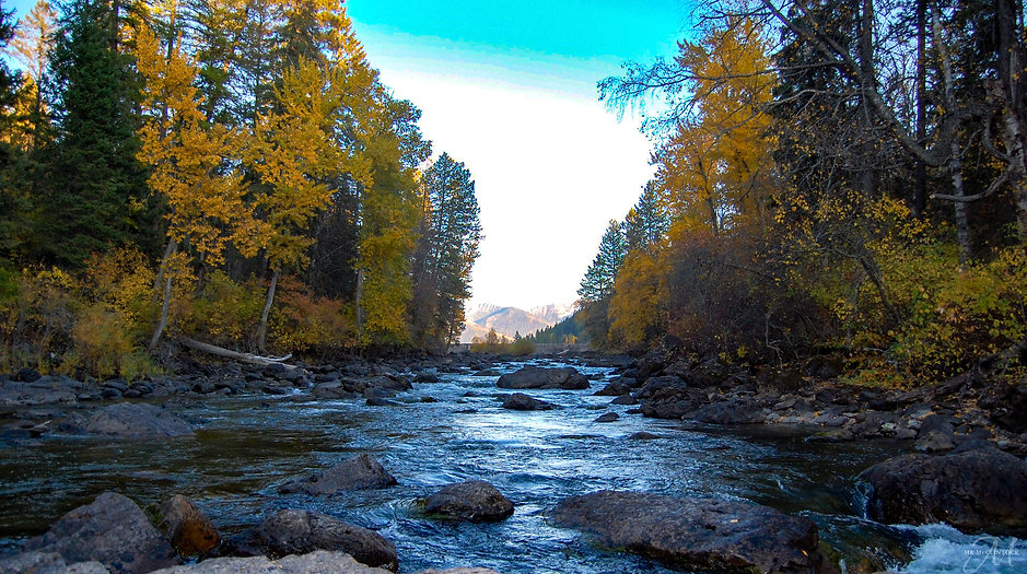 Autumn River 2_MK McClintock_web.jpg