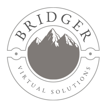 Why should I work with Bridger VS?