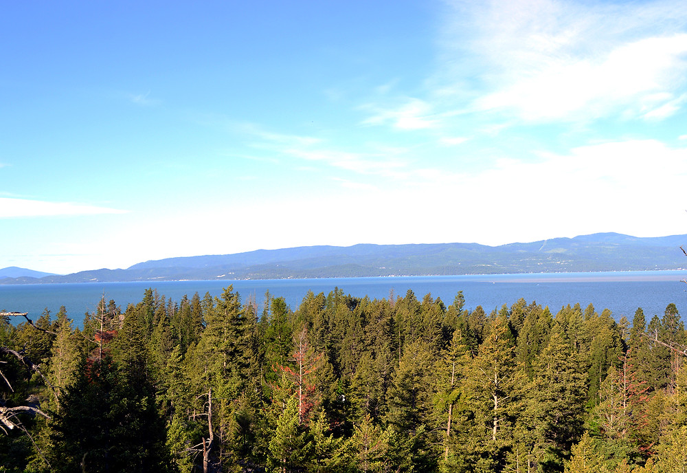 View of Flathead Lake - MKMcClintock.com - #lake #Montana #view #nature