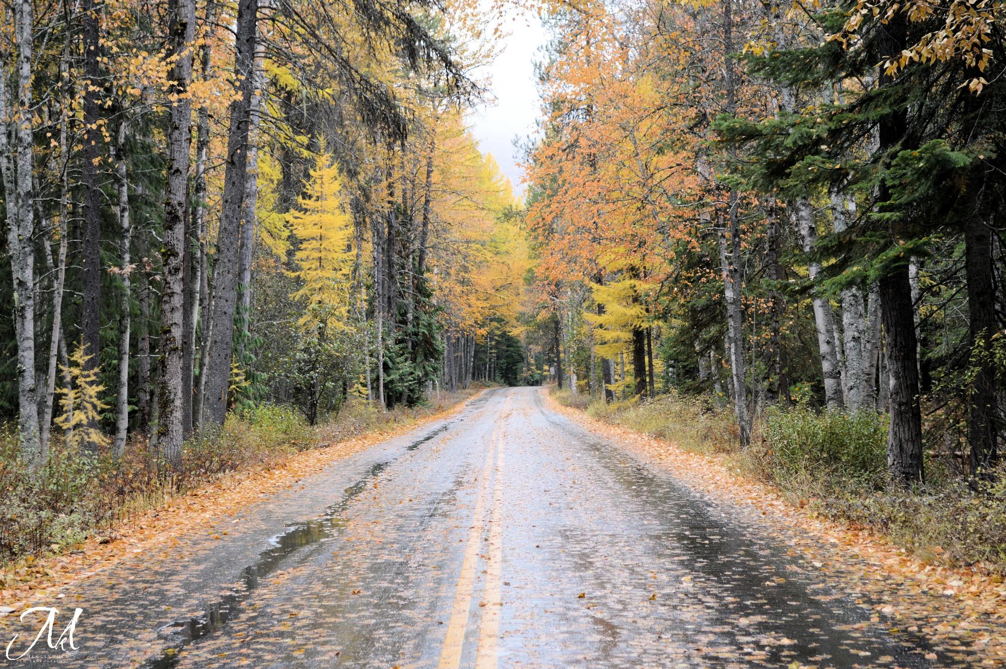 October Rain in Glacier National Park_MKMcClintock | #photography #GlacierPark #mountains #emptyroad