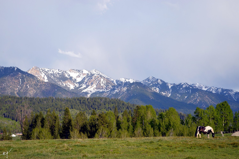Alpine, Wyoming_MK McClintock