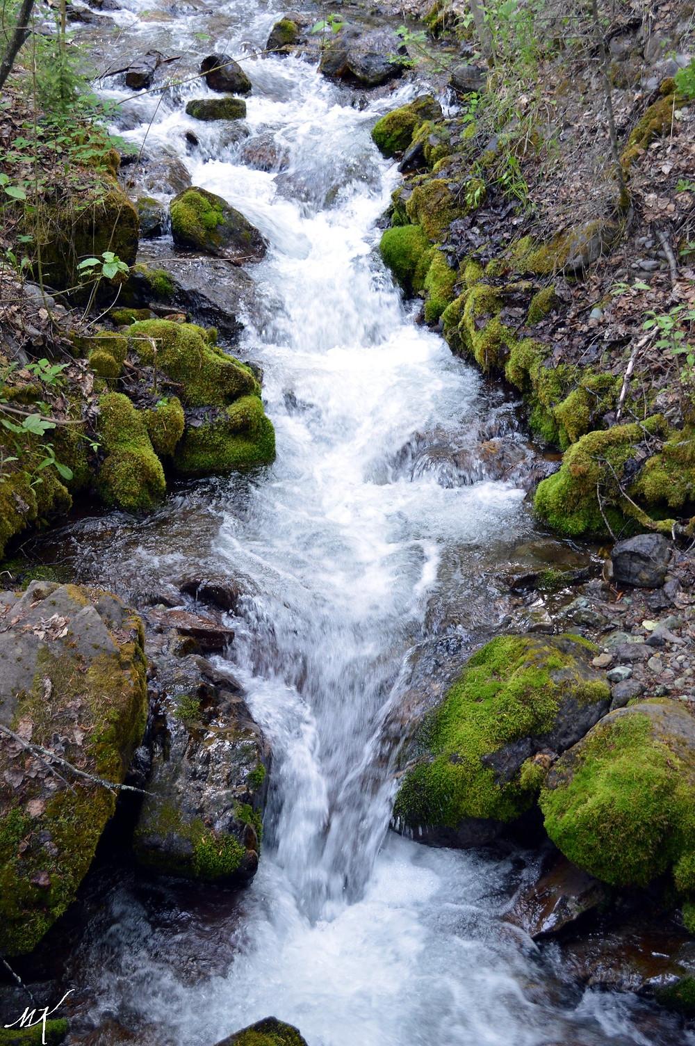 Waterfall Whitefish MK McClintock
