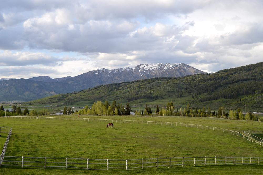 Alpine, WY_MK McClintock