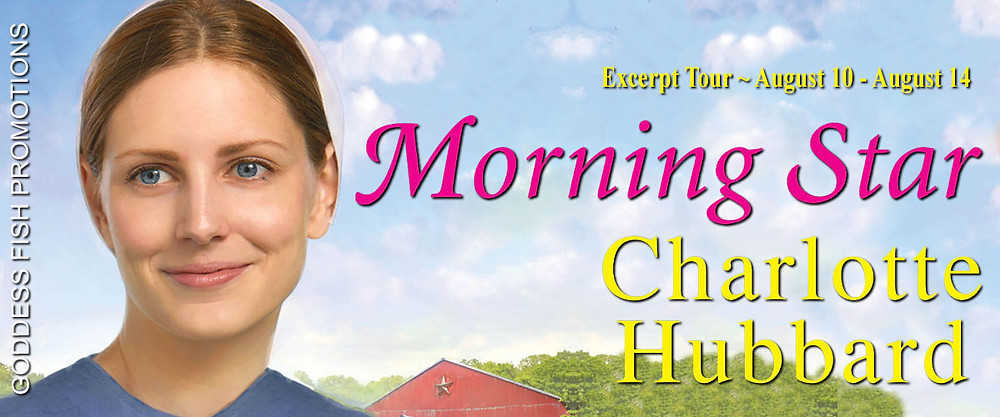 Blog Tour for Morning Star by Charlotte Hubbard