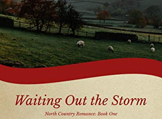 Reading Room: Waiting out the Storm by Ruth Logan Herne