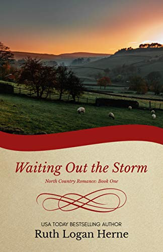 Waiting out the Storm by Ruth Logan Herne - Book Recommendation