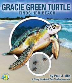 Gracie Green Turtle_Paul J. Mila.jpeg