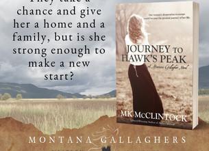 Book Birthday: Journey to Hawk's Peak