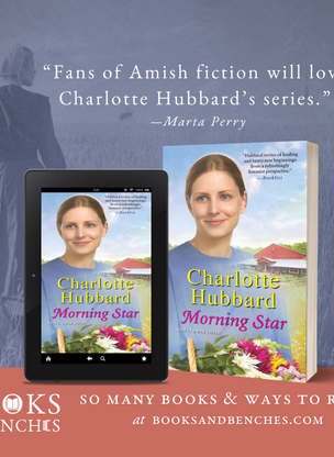 Healing and Bravery in MORNING STAR by Charlotte Hubbard - Excerpt