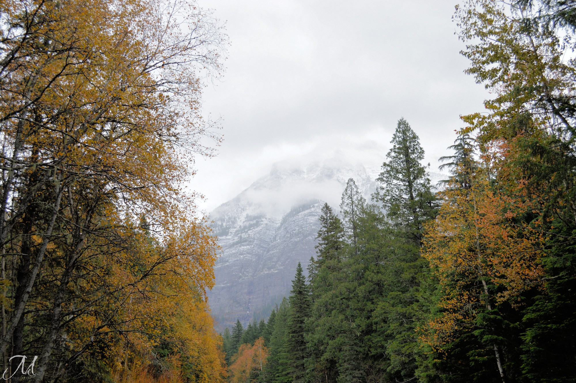 October Mist in Glacier National Park_©MKMcClintock | #Montana #mountains #snow #autumn #fall