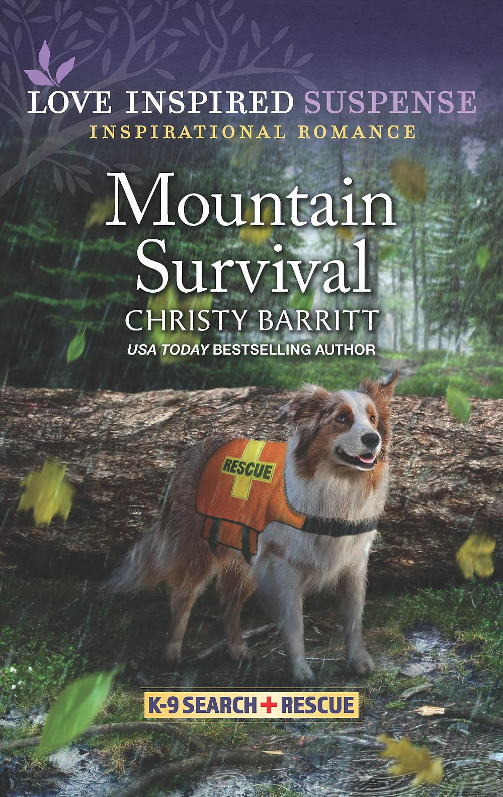 Mountain Survival, a Love Inspired Suspense novel by Christy Barritt