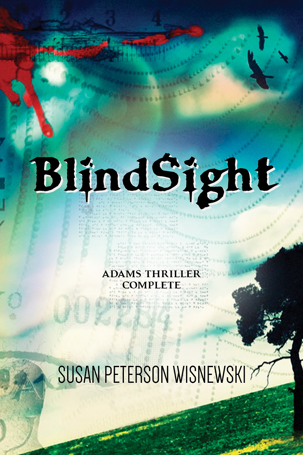 BLINDSIGHT by Susan Peterson Wisnewski