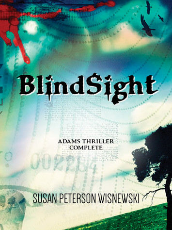 A Reader's Opinion: BLINDSIGHT by Susan Peterson Wisnewski
