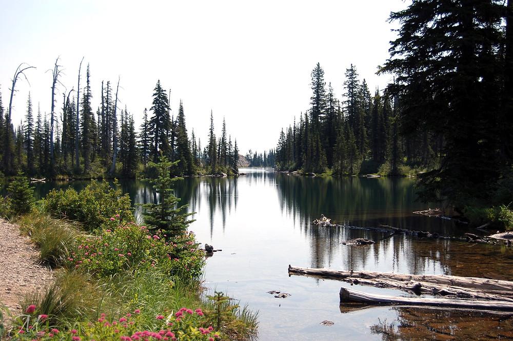 Lake in Jewel Basin hiking area in Montana - ©MK McClintock #lake #mountains