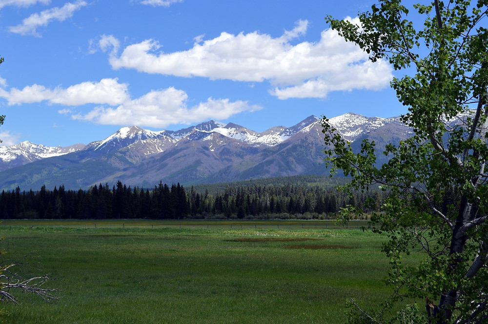 Montana landscape - author MK McClintock - #mountains #bliss