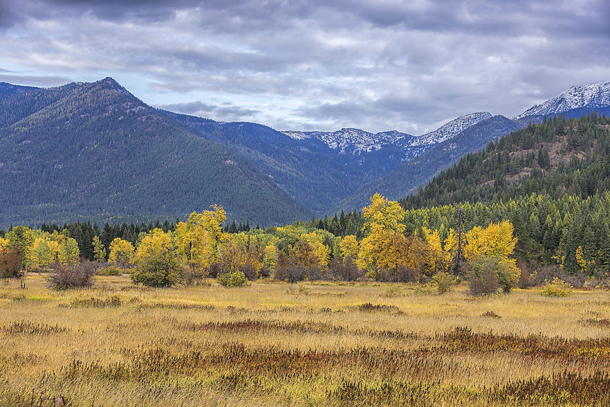 AdobeStock_228713020_Montana autumn_sm.j