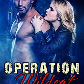 OPERATION WILDCAT by Megan Michelau - A Reader's Opinion